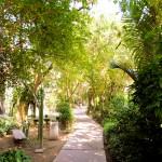 área verde 4