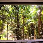 área verde 3
